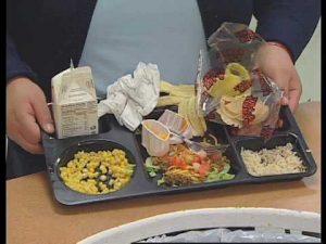 Food Waste Disposal