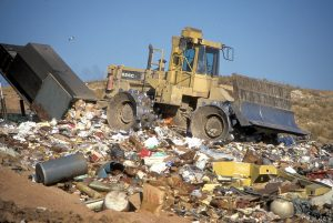 the harmful impact of rubbish