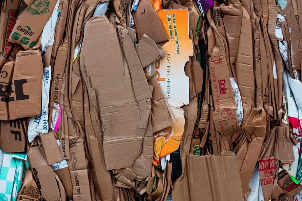 cardboard rubbish